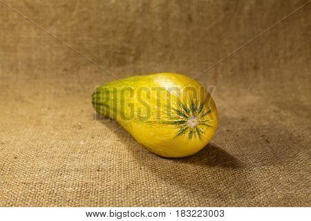 Zucchini's zucchini lies on sackcloth. Tasty useful food full of vitamins