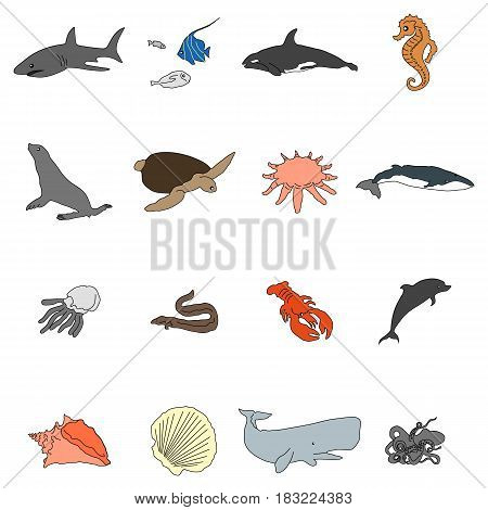 Icons of sea inhabitants in a flat style with a black stroke. Vector image on a round colored background. Element of design, interface.