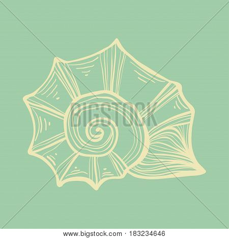 Sea shell nautilus. Soft color vintage illustration. Isolated on turquise background.