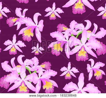 Floral seamless pattern with orchid flowers on dark crimson or violet background.