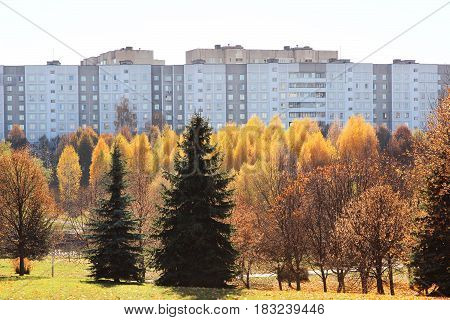 Beautiful autumn park. Autumn in Minsk. Autumn trees and leaves. Autumn Landscape. Park in Autumn. Forest in Autumn.