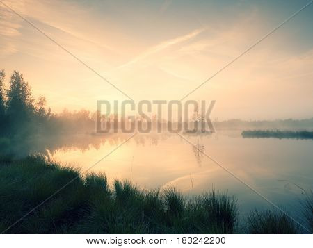 The  Island In Middle Of Lake. Purple Morning With Peaceful Water Level In Mysterious Forest.