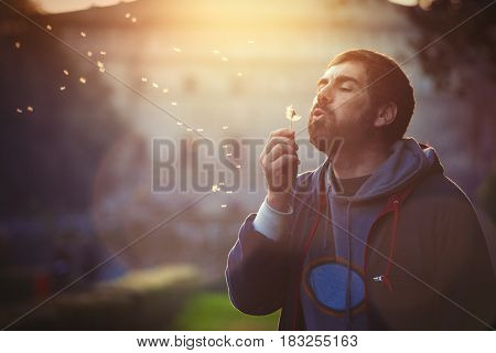 Man in nature. Harmony and romance. A bearded man is blowing a dandelion flower in a natural park at sunset.