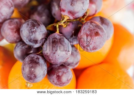 Grape and oranges close up. Focus on grapes.