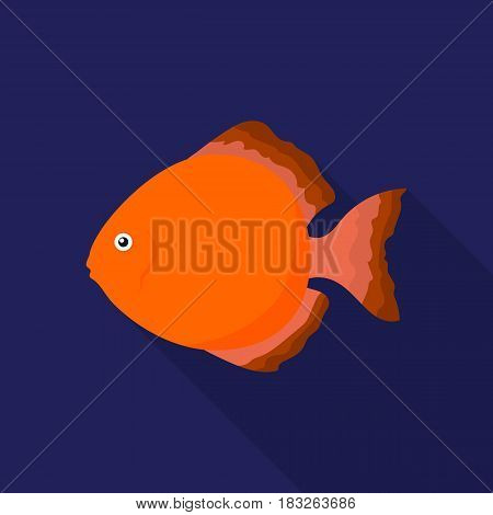Discus fish icon flat. Singe aquarium fish icon from the sea, ocean life flat.