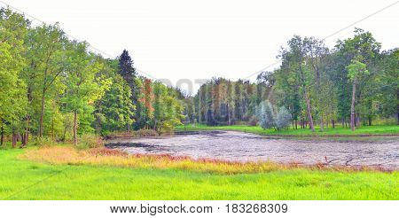 Lake and forest at summer day in Russia.