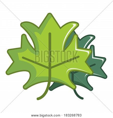 Green maple leaves icon. Cartoon illustration of green maple leaves vector icon for web