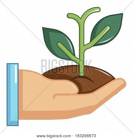 Hand holding green sprout icon. Cartoon illustration of hand holding green sprout vector icon for web