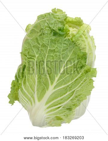 Fresh celery cabbage salad head of lettuce