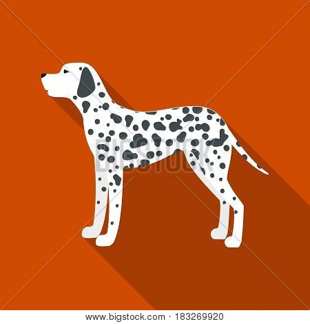 Dalmatian vector illustration icon in flat design