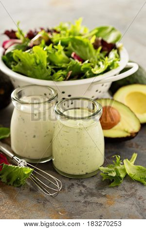 Avocado and herbs ranch dressing with fresh salad leaves