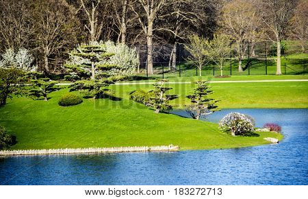 park, green park, relaxing botanic garden with blue lake and green landscape in the spring, chicago botanic garden park, park concept, water park, spring park, park with trees water and flowers