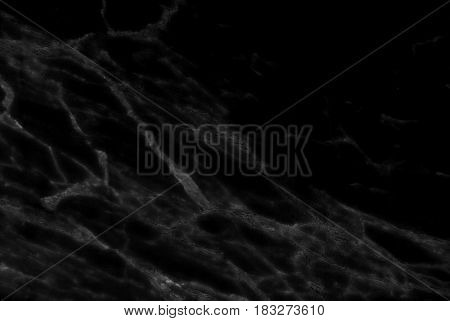 Black marble texture abstract background pattern with high resolution, Detailed of real genuine marble from nature.