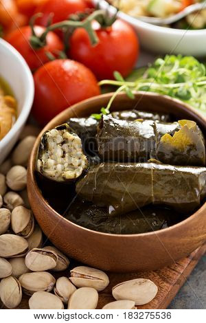 Dolmades, Stuffed Grape Leaves with rice and lemon filling