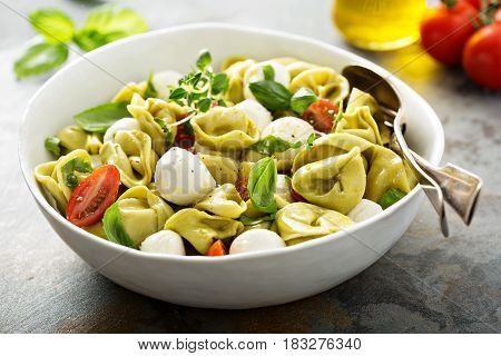 Italian pasta salad with spinach ricotta tortellini, mozzarella, tomatoes and basil