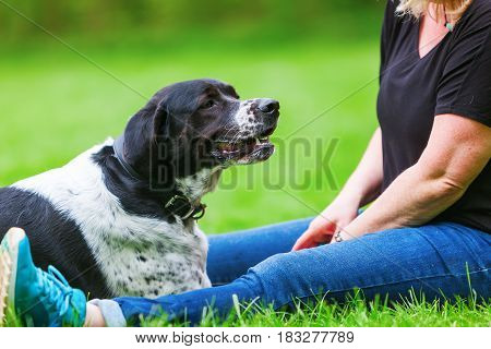 Woman Sitting With Her Dog On The Meadow