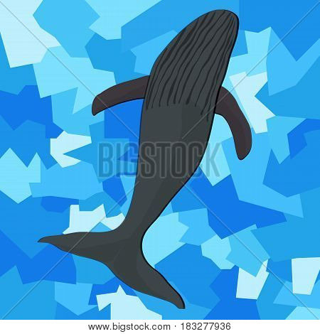 Gray whale on an abstract blue background