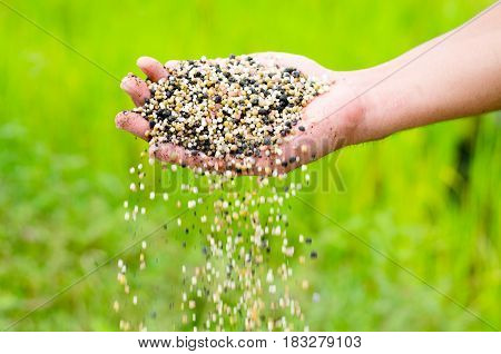 Farmer hand pouring plant chemical fertilizer over green background