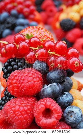Fresh Berries Include  Sweet Strawberry, Raspberry, Blueberry, Blackberry