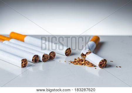 Bunch of cigarettes with one broken on white background. Quiting nicotine and tobacco addiction abstract concept.