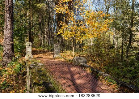 Stone bridge over a ravine in an autumn forest