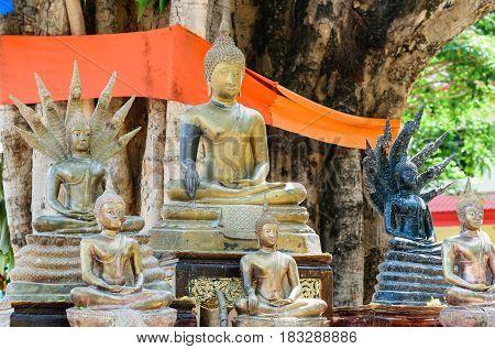 Buddha under the Bodhi tree in Thai temple Thailand