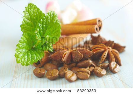 Coffee grains with anise star, fresh green mint leaves and cinnamon sticks on vintage wooden table food ingredients background