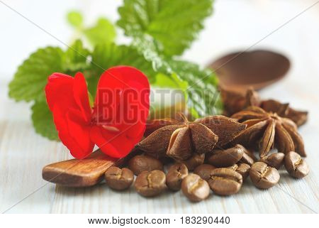 Fresh spearmint leaves red flower with coffee grains and anise spice star on retro wooden table food background. Selective focus.