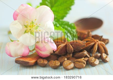 Fresh white spring blossom with spearmint leaves, coffee grains, anise spice star on retro wooden table food background. Retro coffee taste background