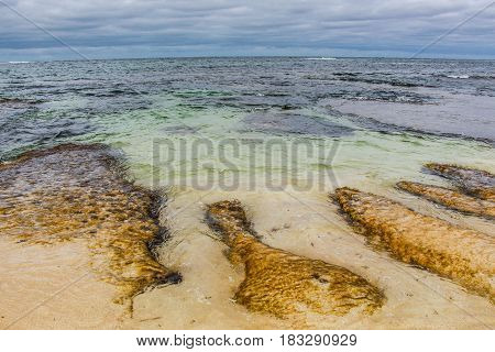 Yellow rock formations under clear water on the beach. Prevelley, Western Australia.