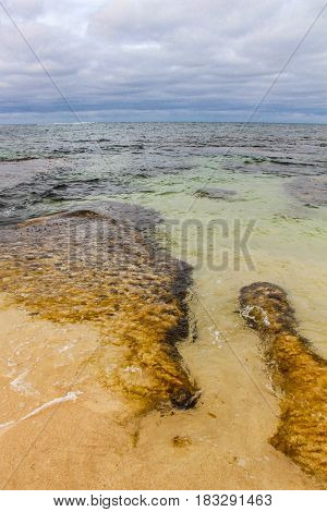 Yellow rock formations under clear water at the beach with dark clouds in distance.