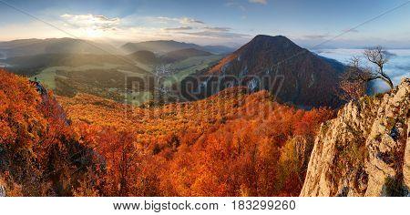 Slovakia forest autumn panorana landscape with mountain at sunrise