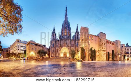 Barcelona Panorama of Cathedral Barri Gothic Quarter