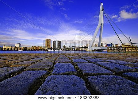 Erasmus bridge Rotterdam Skyline at Sunset The Netherlands
