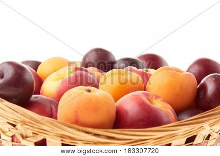 Fresh appetizing fruit in the basket (plums, nectarines and apricots) on a white background.