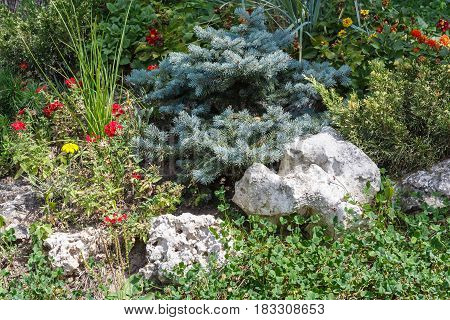 Landscape with the flowerbed decoration and stones