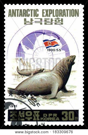 STAVROPOL RUSSIA - April 25 2017: a stamp printed in North Korea shows seals Antarctic research station North Korea circa 1991