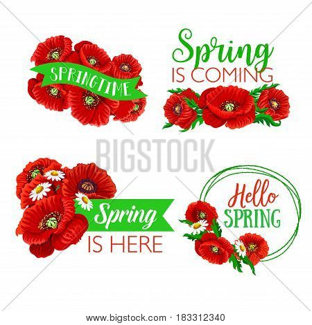 Spring time quotes and greetings on isolated floral bouquets. Vector springtime wishes on ribbons with flowers of blooming poppy blossoms and garden daisy bunches for Hello Spring design set