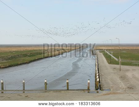 Harbor of Noordpolderzijl and in the air flock of geese to wards the east