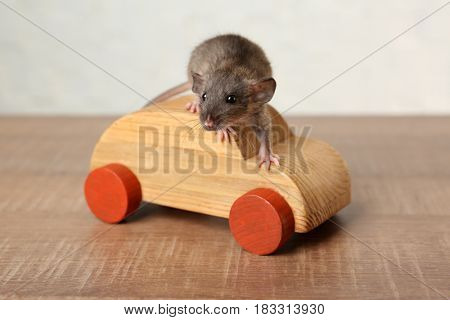 Cute funny rat and decorative wooden car on table