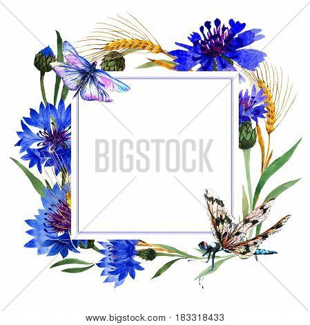 Wildflower carnation flower frame in a watercolor style isolated. Full name of the plant: blue carnation field. Aquarelle wild flower for background, texture, wrapper pattern, frame or border.