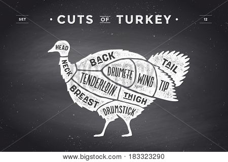 Cut of meat set. Poster Butcher diagram, scheme - Turkey. Vintage typographic hand-drawn turkey silhouette on chalkboard background for butcher shop, restaurant menu, food theme. Vector Illustration