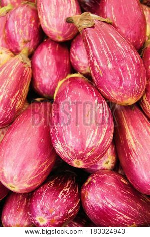 Verzameling van uitgestalde rood paarse witte aubergine