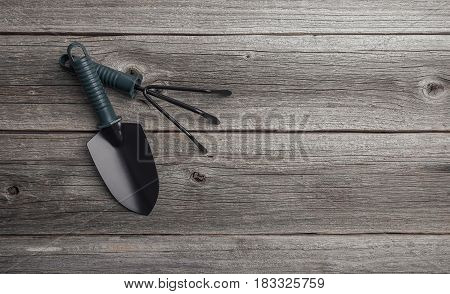 A garden shoulder blade and a rake on a wooden background.