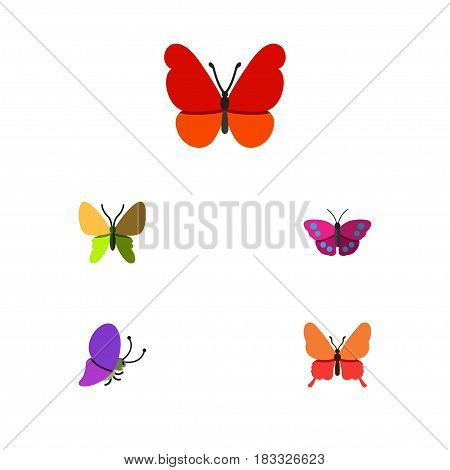 Flat Butterfly Set Of Monarch, Summer Insect, Beauty Fly And Other Vector Objects. Also Includes Monarch, Butterfly, Moth Elements.