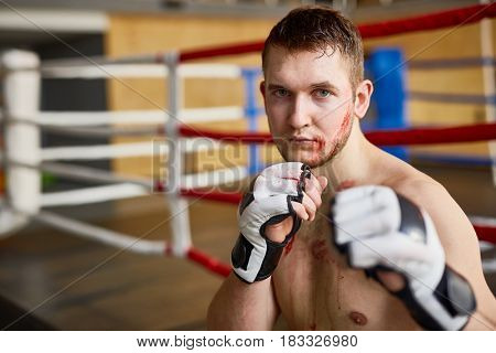 Portrait of strong muscular man looking at camera with determination after finishing fight in boxing ring, covered in blood  and clutching fists