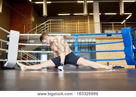 Portrait of muscular athlete stretching muscles in sports training, performing splits on floor in boxing ring