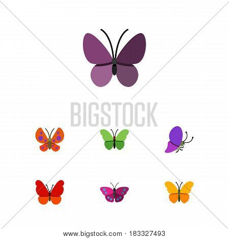 Flat Moth Set Of Archippus, Milkweed, Moth And Other Vector Objects. Also Includes Insect, Butterfly, Moth Elements.