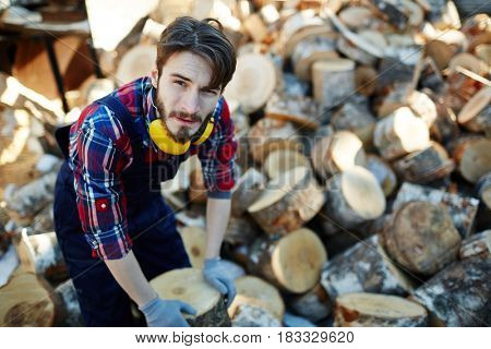 Young forester working with tree stumps