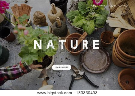 Nature word on plants background
